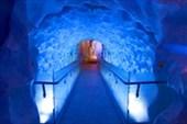 Подводный аквариум Кэлли Тарлтон