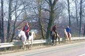 Местные туристы :)