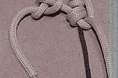 Knot_blake10