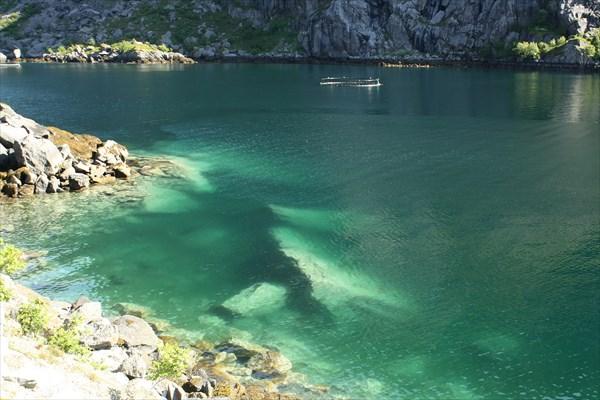 Прозрачность воды в Nusfjord