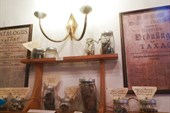 Аптека в Таллине