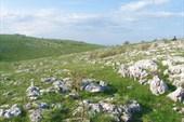 Типичный для Караби-Яйла пейзаж