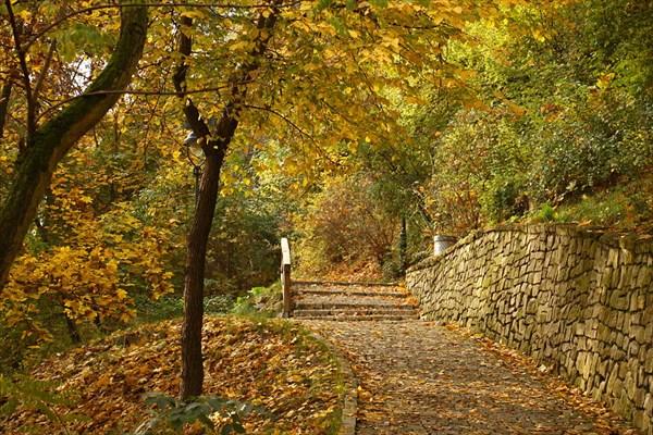 Парк Кинского