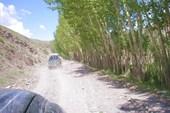Дорога на Бамиан. Впереди машина с охраной.