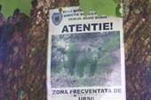 везде развешаны предупредительные плакаты