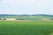Австрийские холмы