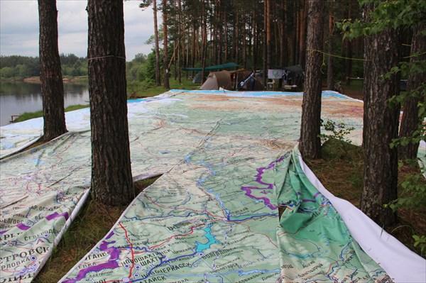 Да, лесов в России много....
