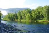 Утро на реке Кумир