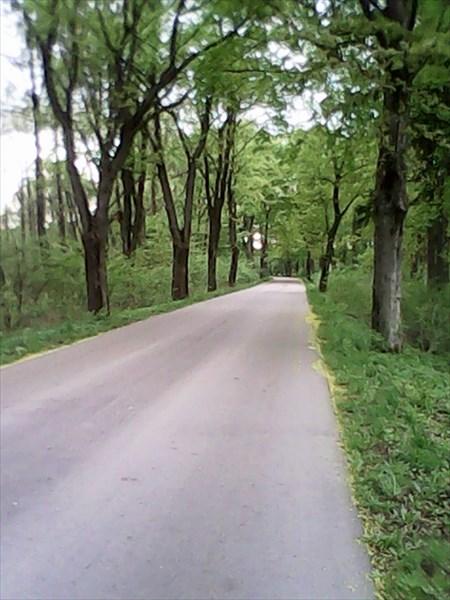Второстепенная дорога на Венгожево.
