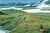 Долина Изъякырью. След вездеходной дороги перекрывают снежники