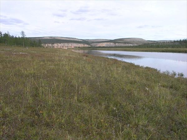 Устье притока Верхнее Нале