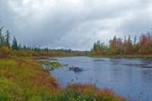 Река Бахта в верховьях