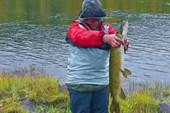 Рыбак и его добыча