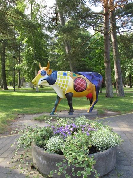 Коровы Вентспилса