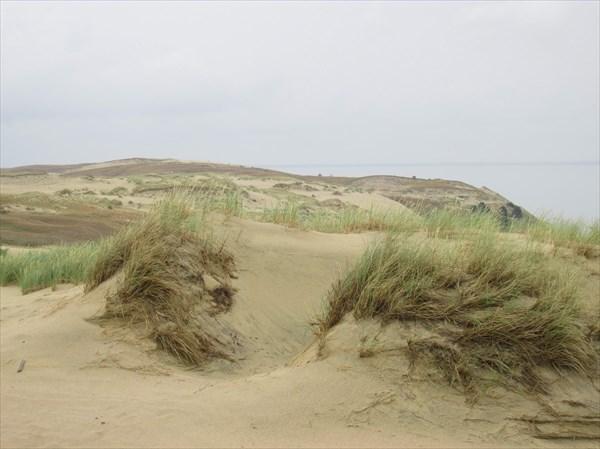 Океан песка