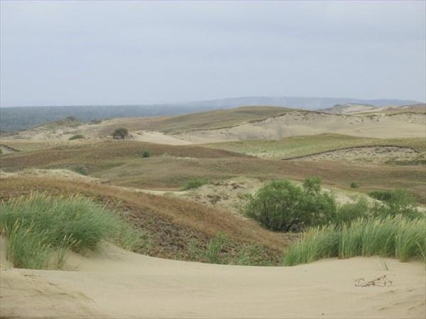 Серые дюны