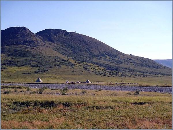 Стоянка оленеводов на левом берегу Чигим