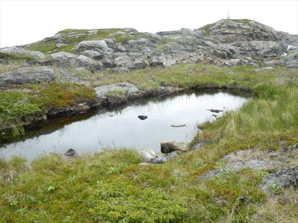 Ванночка с пресной водой