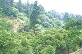 Небольшая долина