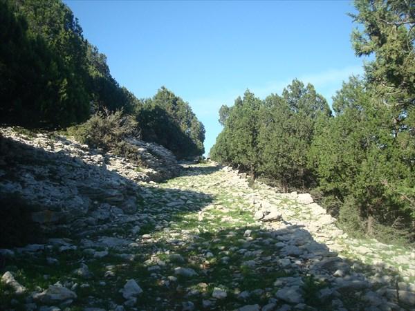 Путь А.Македонского