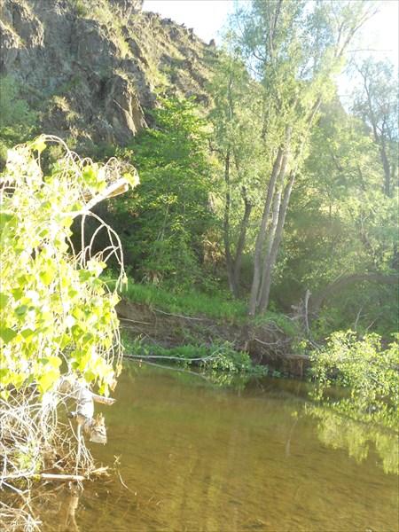 Река Губерля