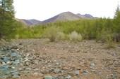 Речка Сайлюгем (Каменный ручей)