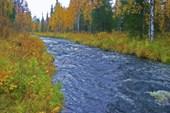 Ручей, приток Нераки