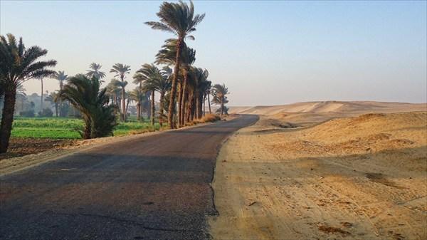 Оазис отделяется от пустыни асфальтом