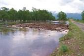 Река Иркут после дождика