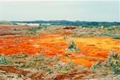 Нереальные пейзажи вулкана Далол