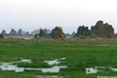 Вулканические образования на озере Аббе