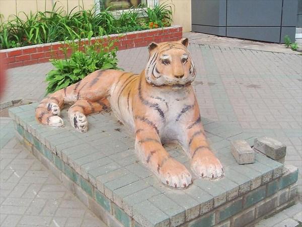 082-Владивосток-тигр