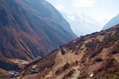 Обратный путь. Вид на долину Tsum.