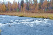 Плотины Бурусила