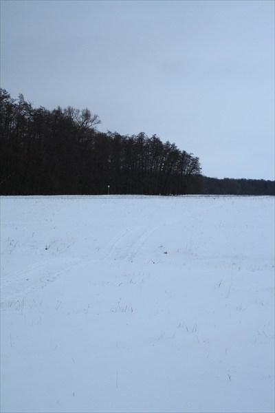 Колея снегохода. Почти на опушке.