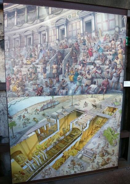 Жизнь Колизея