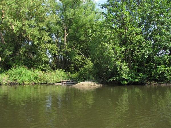 Здесь вливается речка Курганка