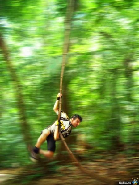 Макака в джунглях :)