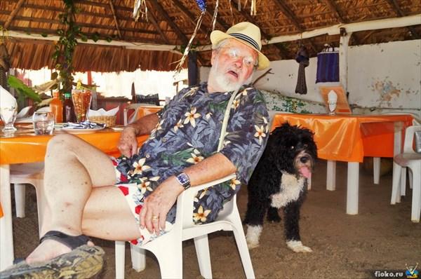 Милионер со своим забавным псом орендова пляж в Пуэрто-Эскондидо