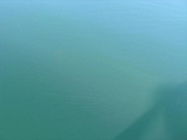 Море103