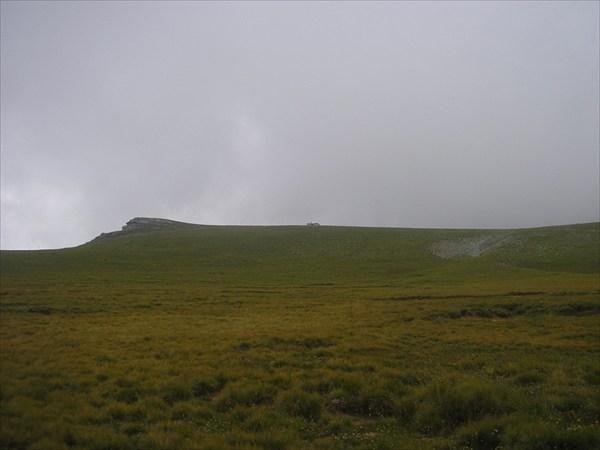 P8216605