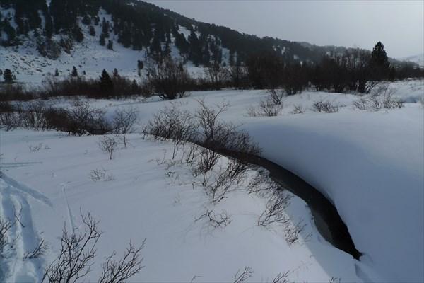 Под снежным покрывалом