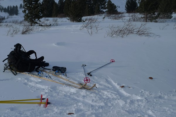 ... и шишки полетели в сторону брошенных лыж и рюкзака!)