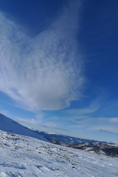 Облачная птица в небе
