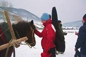 `заговаривание` лошади