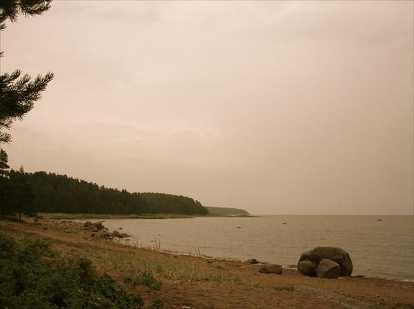 Финский залив район Зеленогорска
