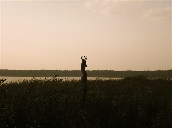 Обитатели Литовских озер