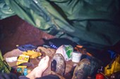 ПБЛ Старое Дно, вид из палатки