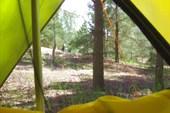 Вид из окошка моей палатки