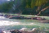 `бирюзовая катунь`-река алтая